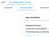 Twitter Application Keys