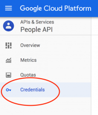 Google Application - Credentials Menu